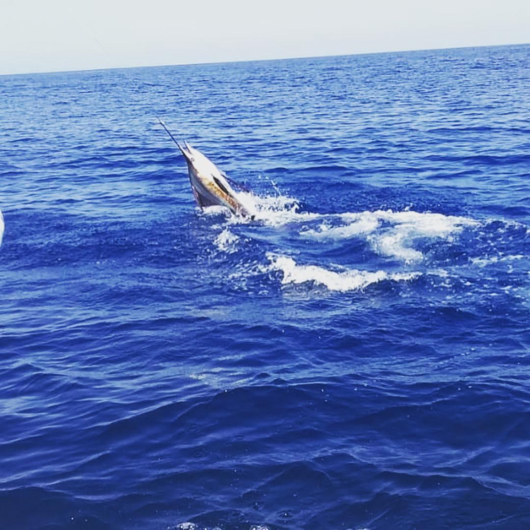 Guatemala - Capt. Nestor Garcia on Monsoon went 19-23 on Sailfish.