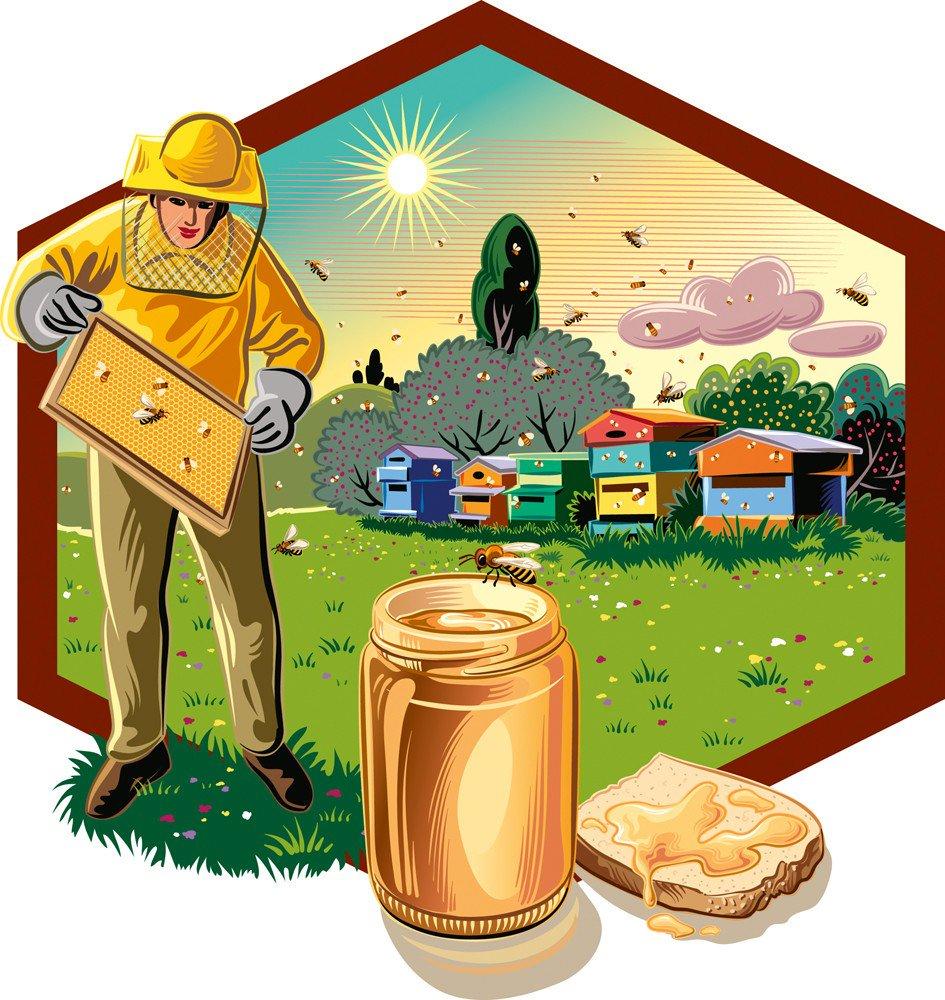 немногие работа пчеловода рисунок отличие постановочных фотографий