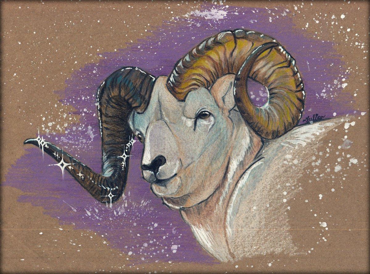 котёнка овен знак зодиака красивые картинки для закатываем