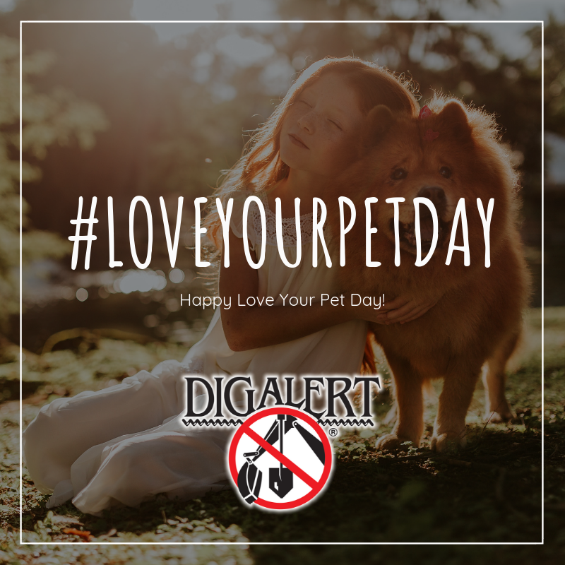 Happy Love Your Pet Day!  Share a picture of you and your pet doing your favorite…