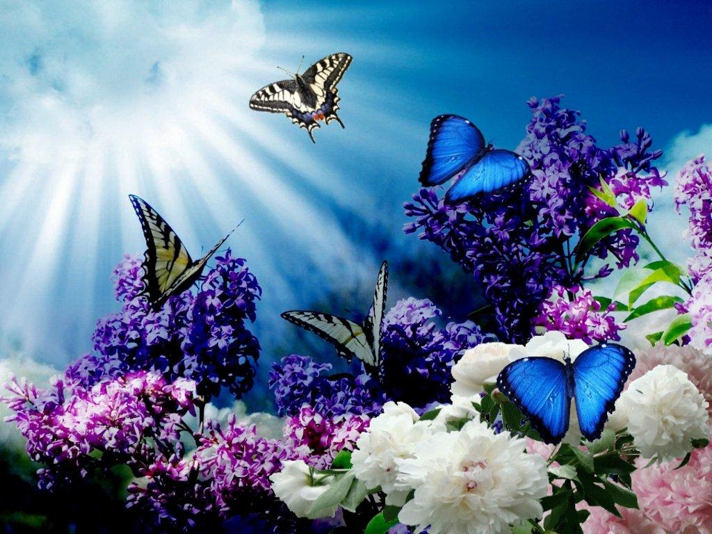 Анимашки с цветами и бабочками, мартом поздравление