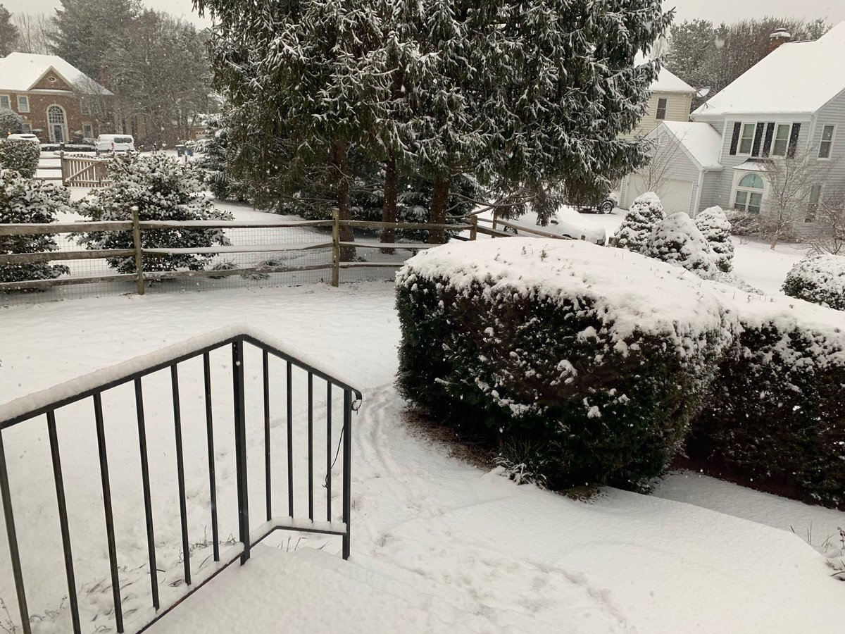 #WUSA9Weather about 2.5 inches in Centreville as measured by Reilly's paws <br>http://pic.twitter.com/fVhy6ZWU6t