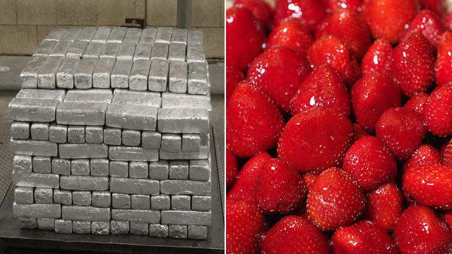 Nearly $13M worth of meth found in trailer with frozen strawberries at Mexico-US border https://t.co/2ZP8czMNqZ