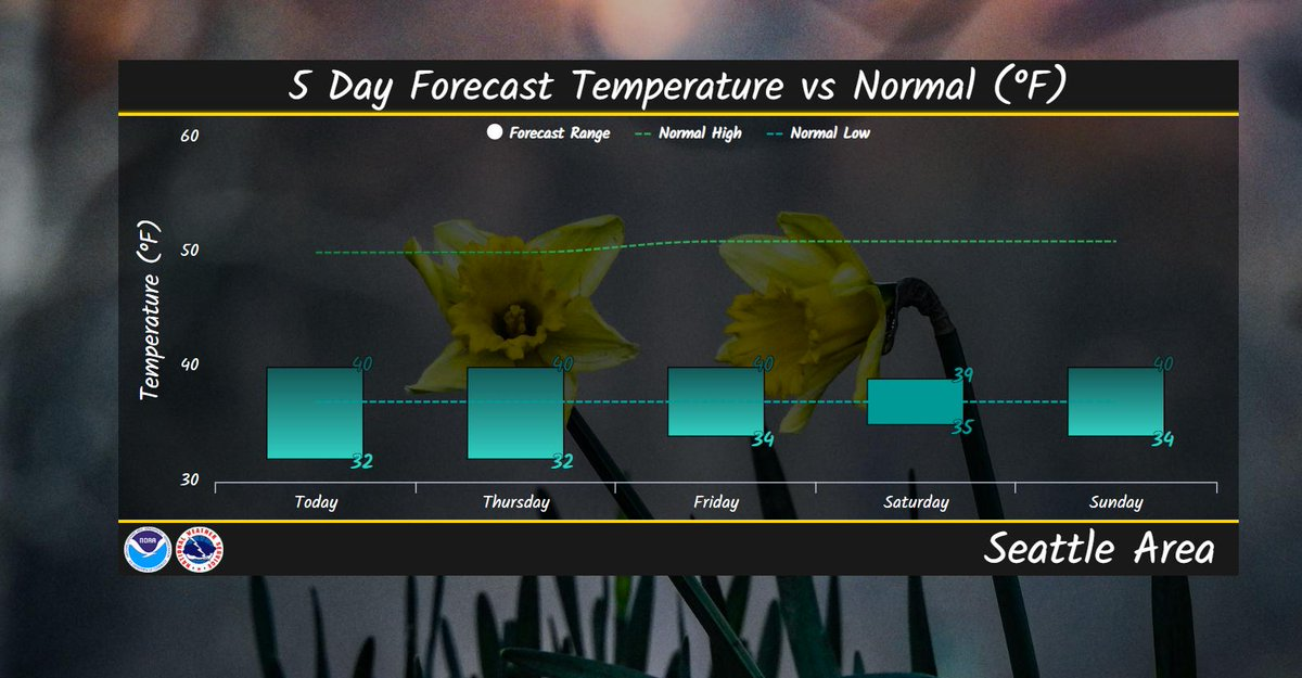'All Apologies' from this meteorologist if this 5 day trend will 'Drain You' of enthusiasm for this winter. It could be awhile before we're 'In Bloom' so 'Come As You Are' (as long as it includes rain gear). And keep that 'Lithium' ion battery charged in your phone.  #wawx