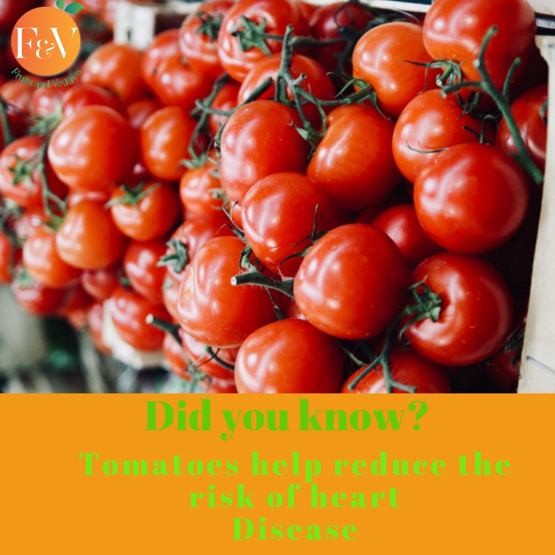 Fun fact!! . Tomatoes contain lycopene which aids in reducing the risk of heart disease   .  #FvJuicers #Healthylifestyle #Fitness #Wellness #EatClean #Salad #Lunch #Fruits #Goal #Smoothies #Salad #Foodie #Weightloss .<br>http://pic.twitter.com/cGqwbm1cot