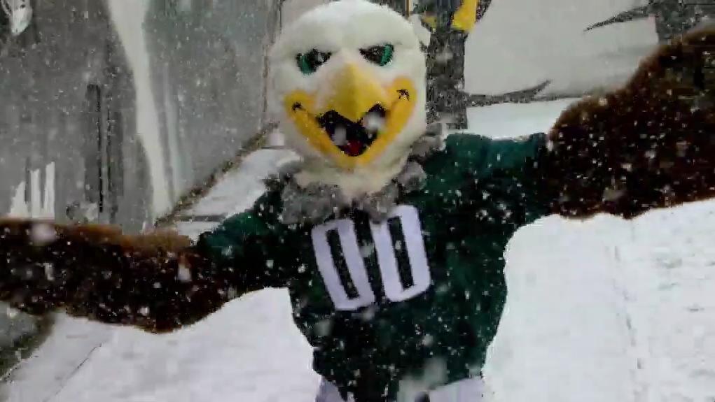 Philadelphia Eagles's photo on Snow Day