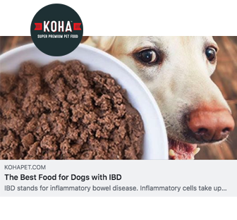 """KOHA Minimal Ingredient Pet Food sur Twitter : """"Discover the best food for  dogs with Inflammatory Bowel Disease or IBD. 🐶 🤓Article by Doctor of  Veterinary Medicine. #HelpYourPetThrive #HealthyDogs  https://t.co/ulzgxboM4m… https://t.co/ERfNYcM7Mb"""""""