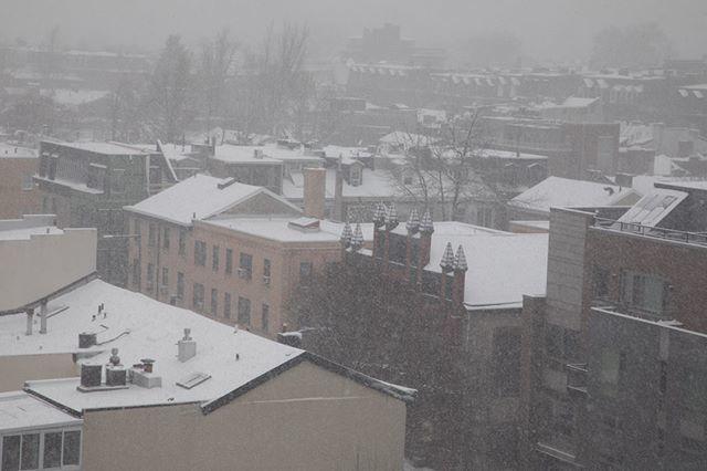 Tom Ipri's photo on Snow Day