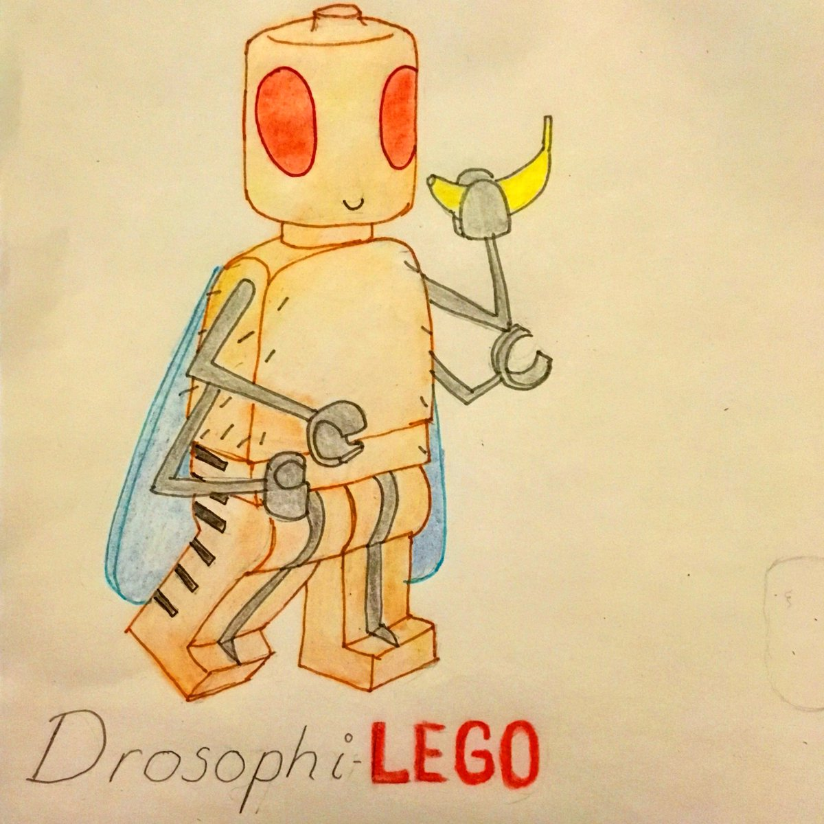 Please can someone invent Drosophila-Lego? #lego #drosophila #drosophilamelanogaster #fruitfly #fly #biology #science #legominifigures #legominifigs #phdstudent #phdlife #scienceisfun #insects #inventions #please #iwant #iwantthis #studentlife <br>http://pic.twitter.com/GS9pbMyVGk