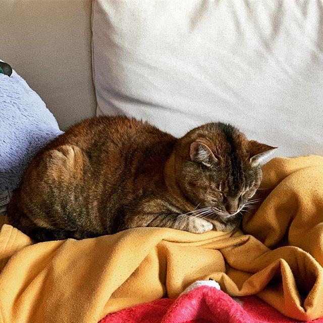 Liz's photo on lizzie