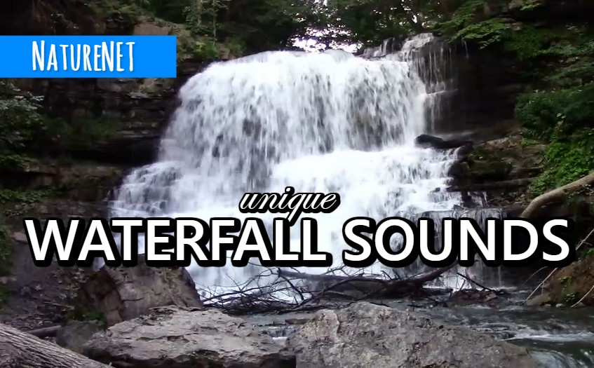 Waterfall Close Up | Relaxing Nature Video https://buff.ly/2BV88fd   #nature #sleep #relax #chill #waterfall #meditate #study #travel
