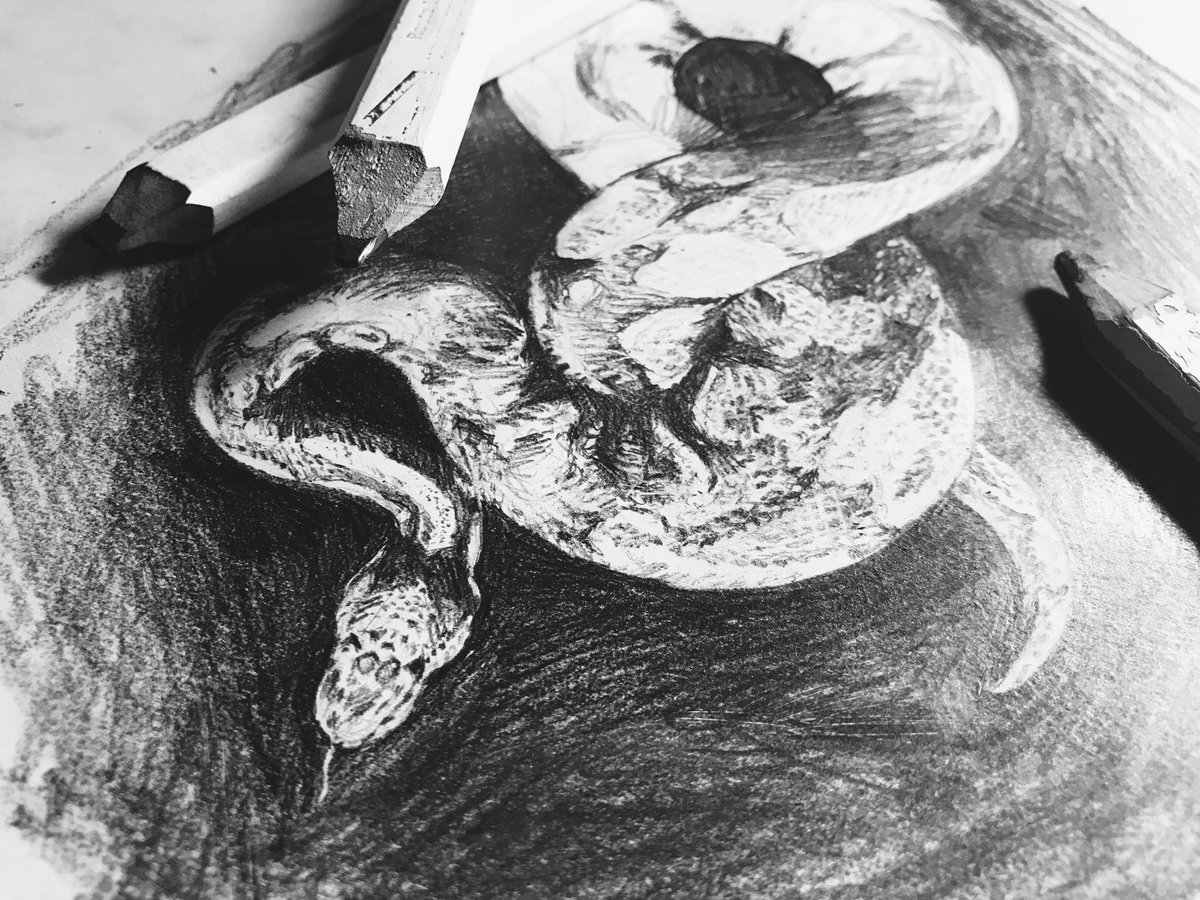 Same snake, less finished. Pencils laying around it.