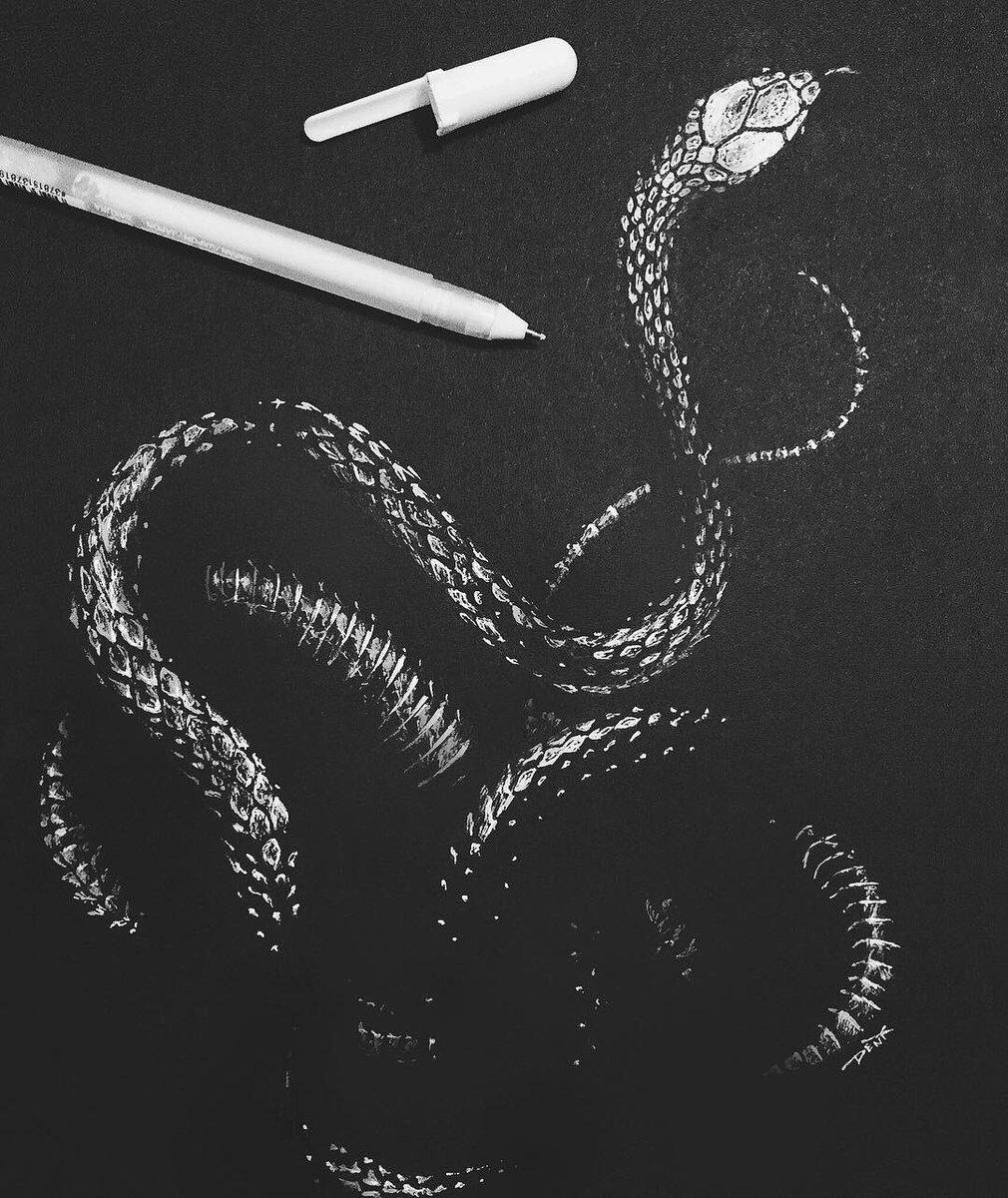 Black and white, white ink snake on black paper.