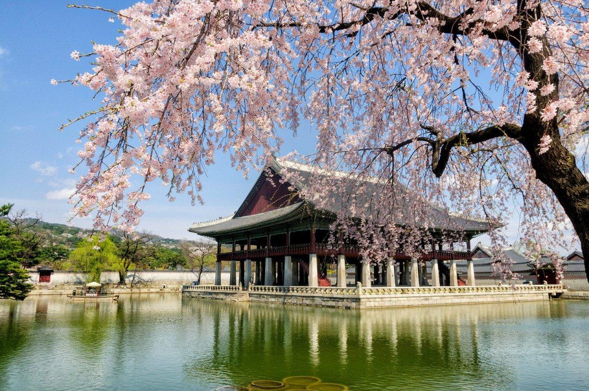 Достопримечательности южной кореи сеул фото