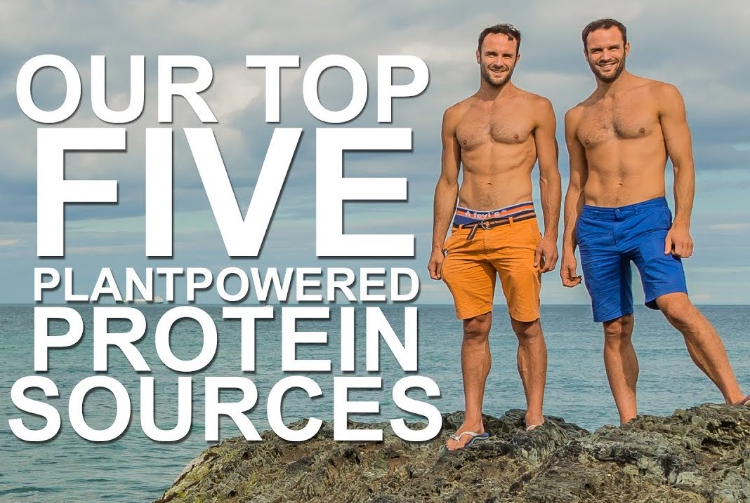Ever wondered where we get our protein? Check out our top plant-based protein sources! https://t.co/aAgxrUqtEd #vegan #plantbased #plantbasedproteinprotein