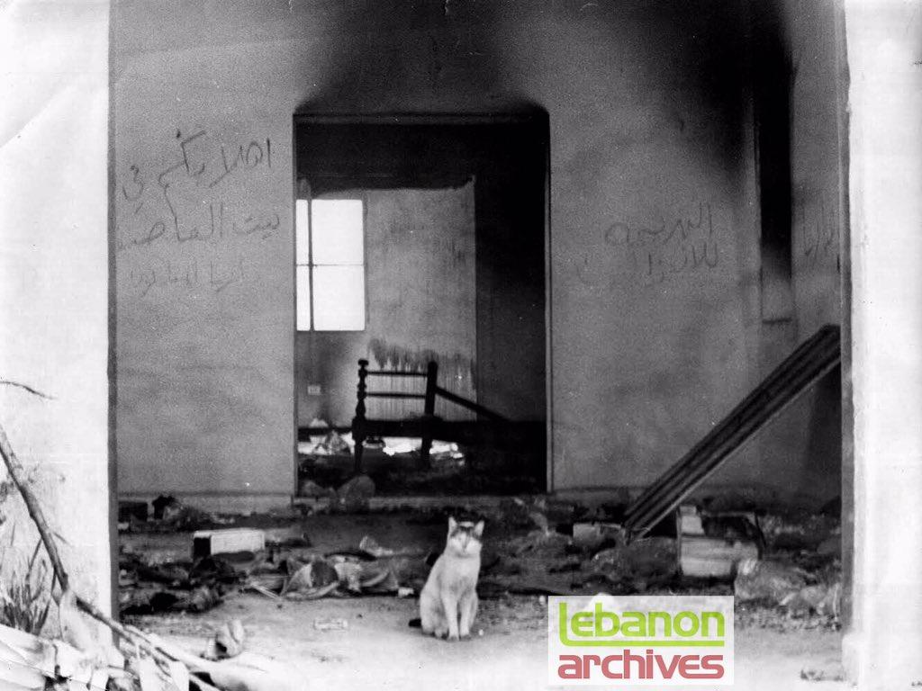 ثريد مخصص لقطط الحرب الأهليّة 😼🔫  ١: لم يبق في هذا البيت في الدامور الذي هُجِّر أهله ونُهبت محتوياته سوى هذه القطة - نيسان ١٩٧٦