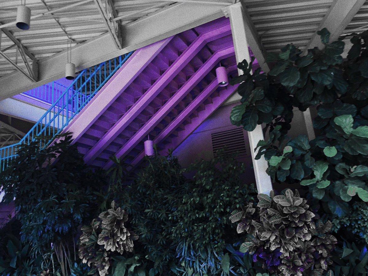 RT @_mohae_: ✧・゚: *✧・゚:*  twilight ✧・゚: *✧・゚:*   #ATINYSelcaDay https://t.co/IDmmlsMcvo