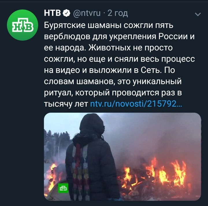 """Путін про ймовірність відключення Росії від світового інтернету: """"Теоретично це можливо"""" - Цензор.НЕТ 4062"""