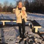 Look in the sun, he says.  A winter sun low in the sky & blinding. #Bichon Beau 🐾 #snow ❄️💙 #farm