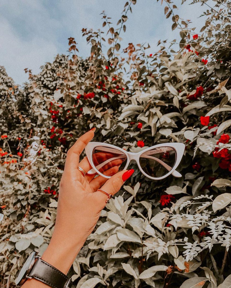 56d0510b8c1  zerouv8371 ⠀ ⠀⠀ ⠀   .    Brazil  plants  flowers  mood  nature  fashion   outdoors  sunglasses  photography  eyewear  shopzerouv  zerouv ...