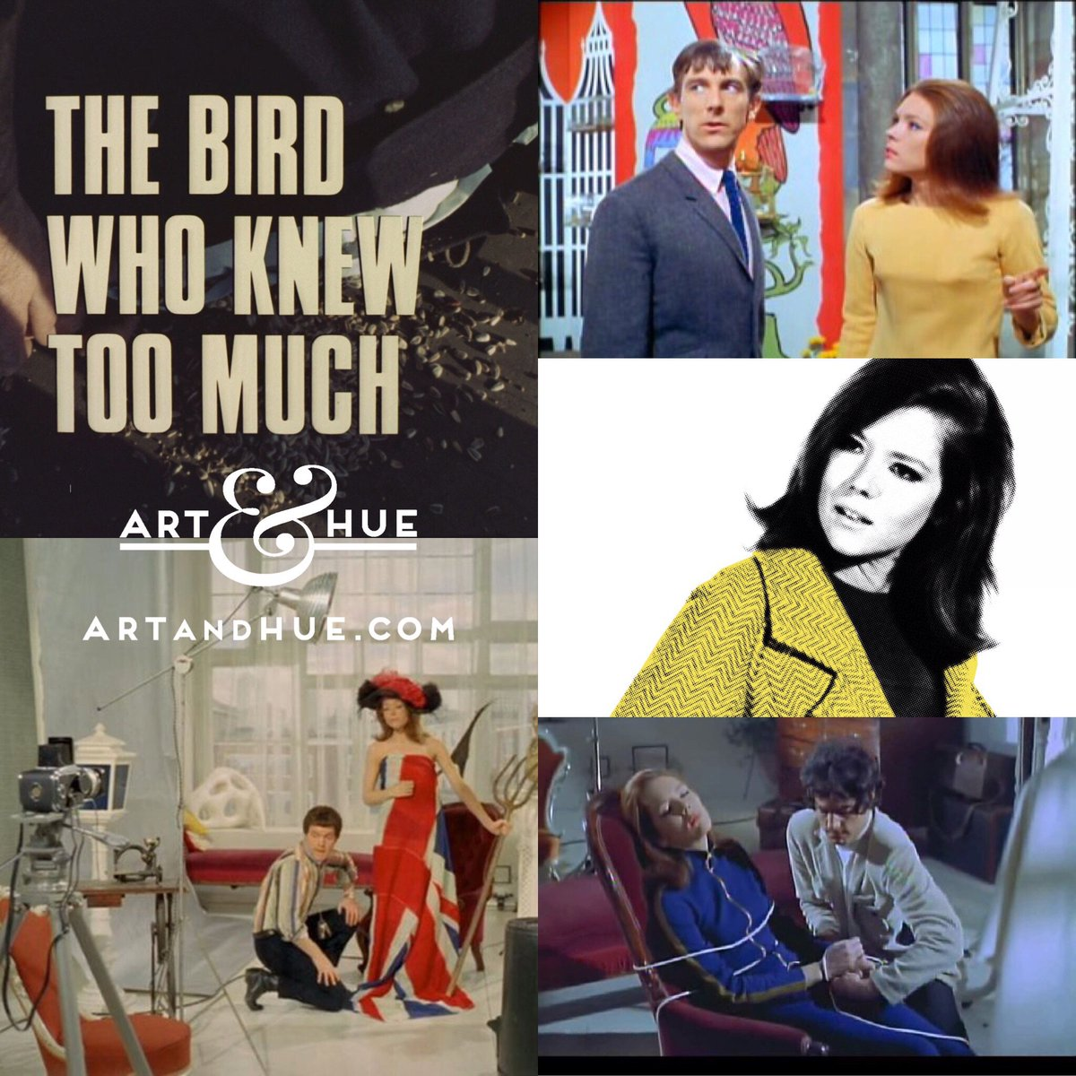 """On this day in 1967, The Avengers episode """"The Bird Who Knew Too Much"""" aired in on British TV for the 1st time.   http://artandhue.com/theavengers   #dianarigg #mrspeel #patrickmacnee #johnsteed #MadeAtElstree #OnThisDay #OTD #TheAvengers #chapeaumelonetbottesdecuir #TheBirdWhoKnewTooMuch"""