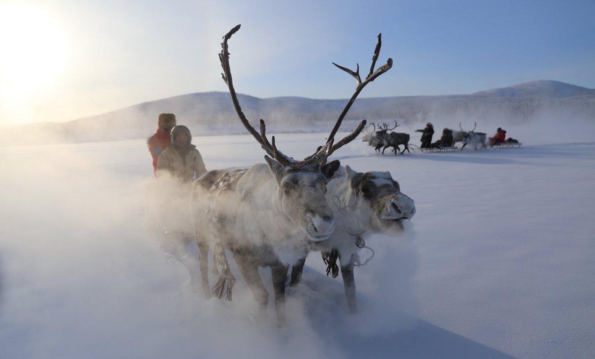 Resultado de imagen para fotos de Oymyakon