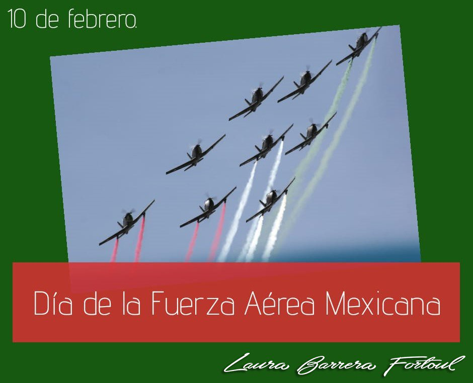 Laura Barrera Fortoul's photo on #FuerzaAéreaMexicana