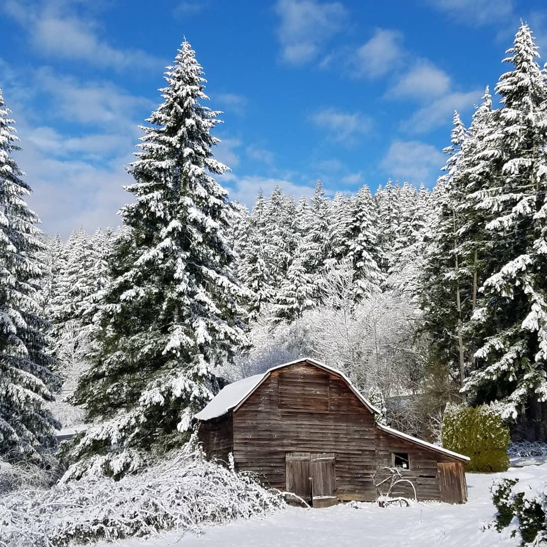 Photos: Snow blankets NW Oregon, SW Washington #koinsnow   https://t.co/vJ5ZtA2Q3Y