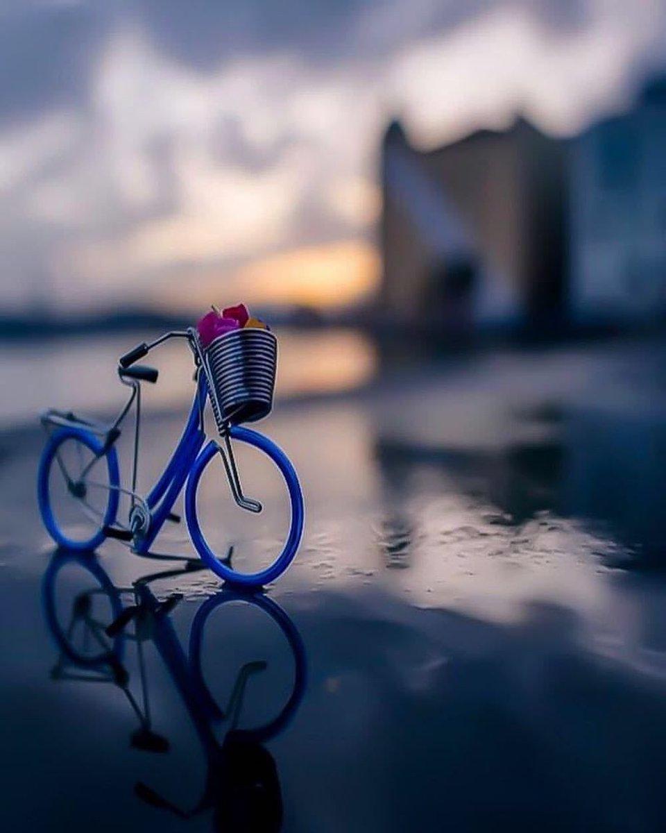 عبدالعزيز الصالح's photo on #صباح_المطر