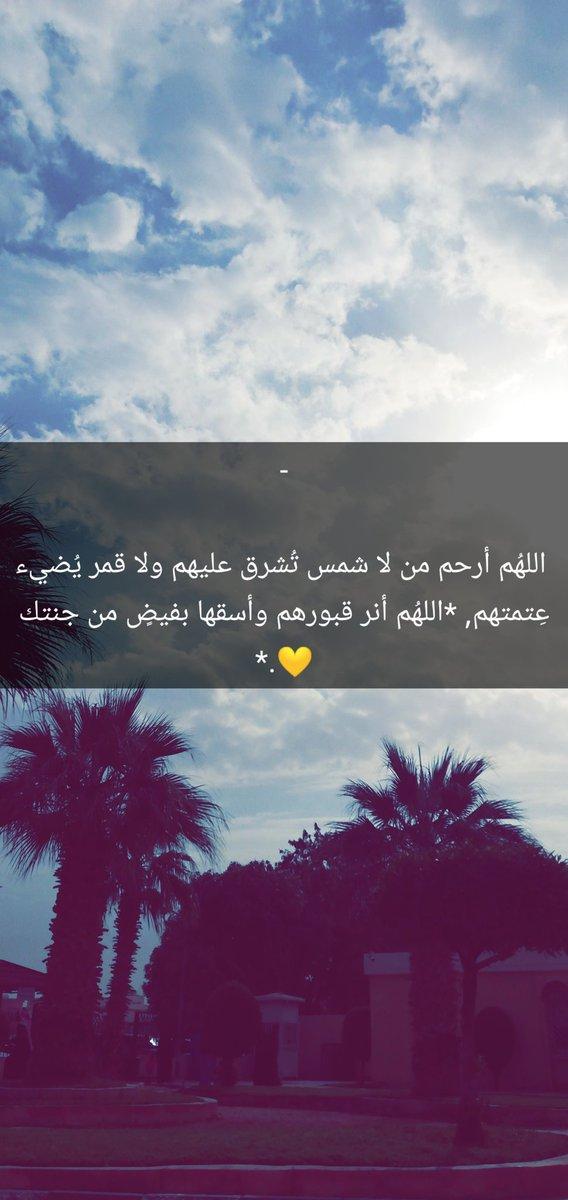 M قـــــــــــبــــــــــــع M's photo on #صباح_المطر