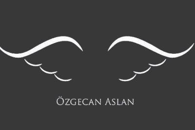 Politik Baykuş's photo on #ÖzgecanAslan