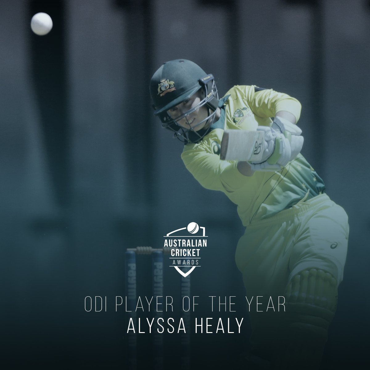 cricket.com.au's photo on Alyssa Healy