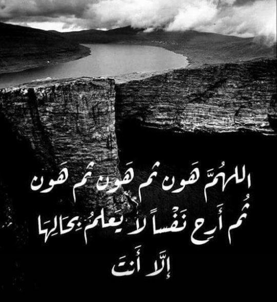 فخامتي's photo on #صباح_المطر