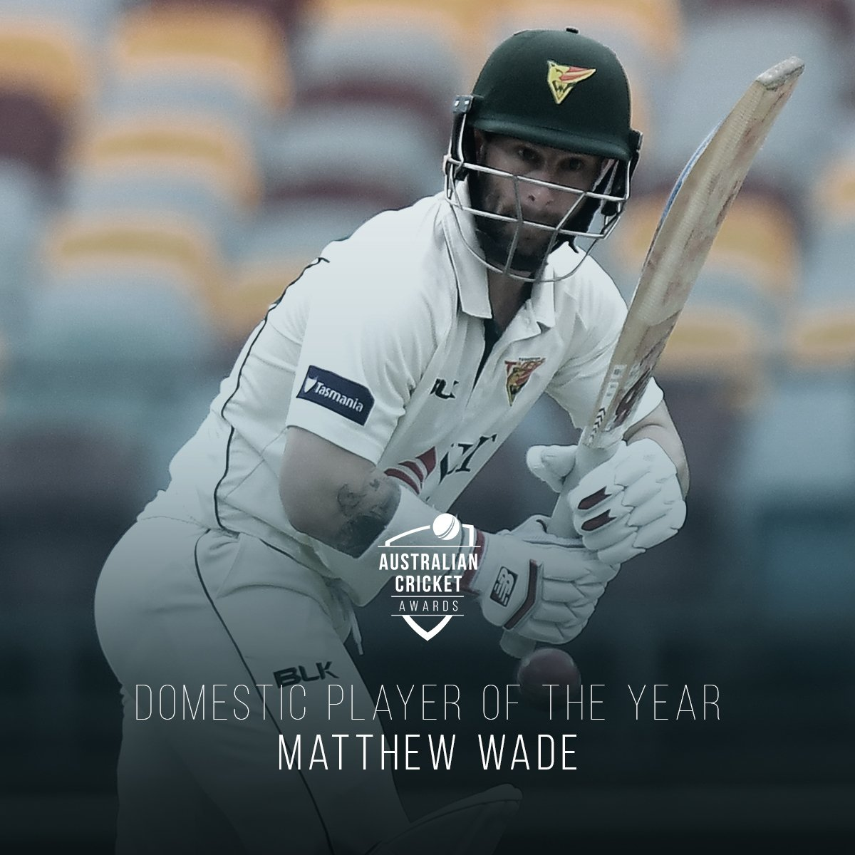 An #AusCricketAwards gong to go with all his runs in 2018.   Matthew Wade is the Men's Domestic Player of the Year! <br>http://pic.twitter.com/iGLTguXfRt