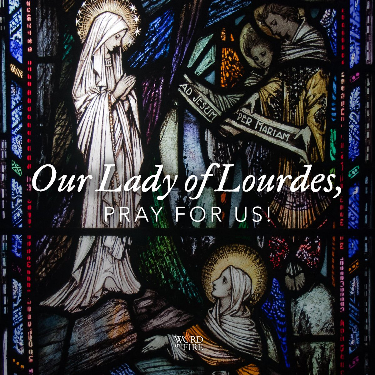 Bishop Robert Barron's photo on our lady of lourdes