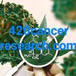 Image for the Tweet beginning:  #marijuana #cbd #domainnames #DomainNameForSale #startups