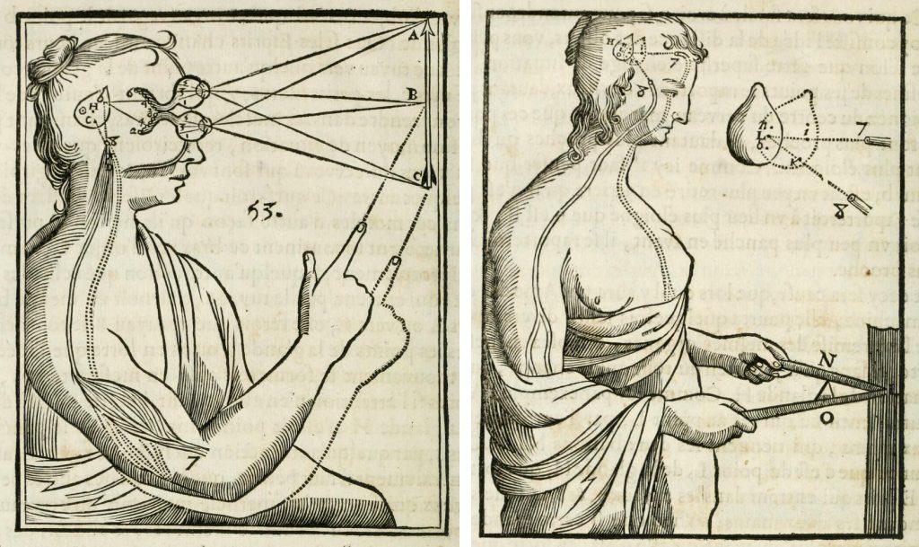 Public Domain Review's photo on René Descartes
