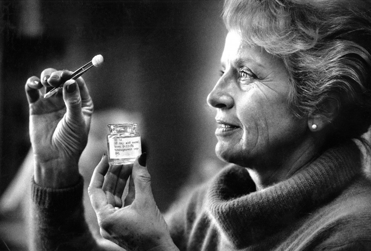 Pablo Barrecheguren's photo on Mujer y la Niña