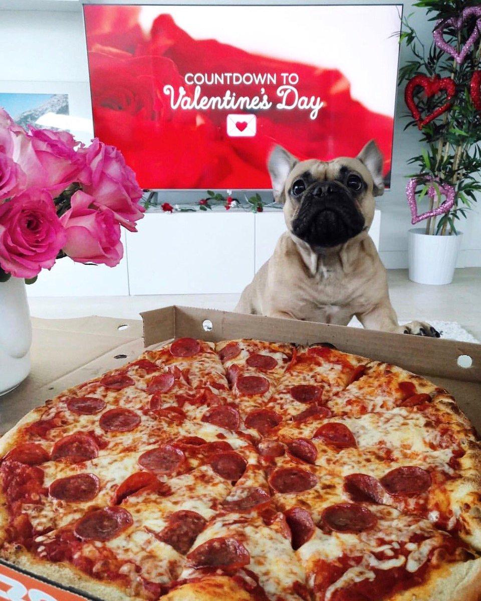 Valentine's Day plans: