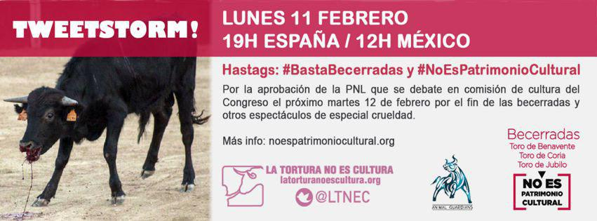 Red AntiTauromaquia's photo on #BastaBecerradas