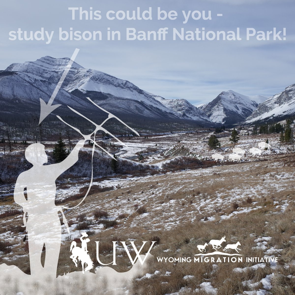 Wyoming Migration Initiative on Twitter: