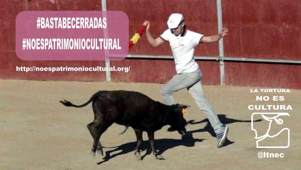 LaTorturaNoEsCultura's photo on #BastaBecerradas