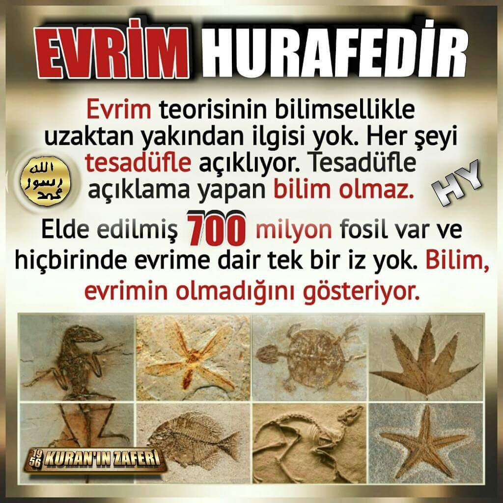 Kuran'ın Zaferi's photo on #EvrimSimetriyiAçıklayamaz