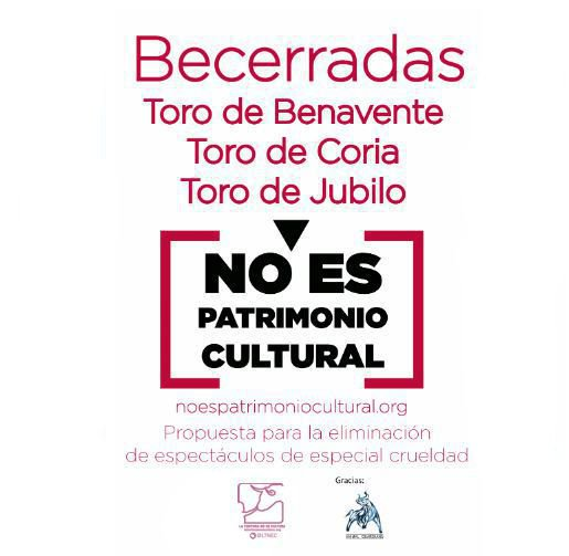 noel viñas's photo on #BastaBecerradas