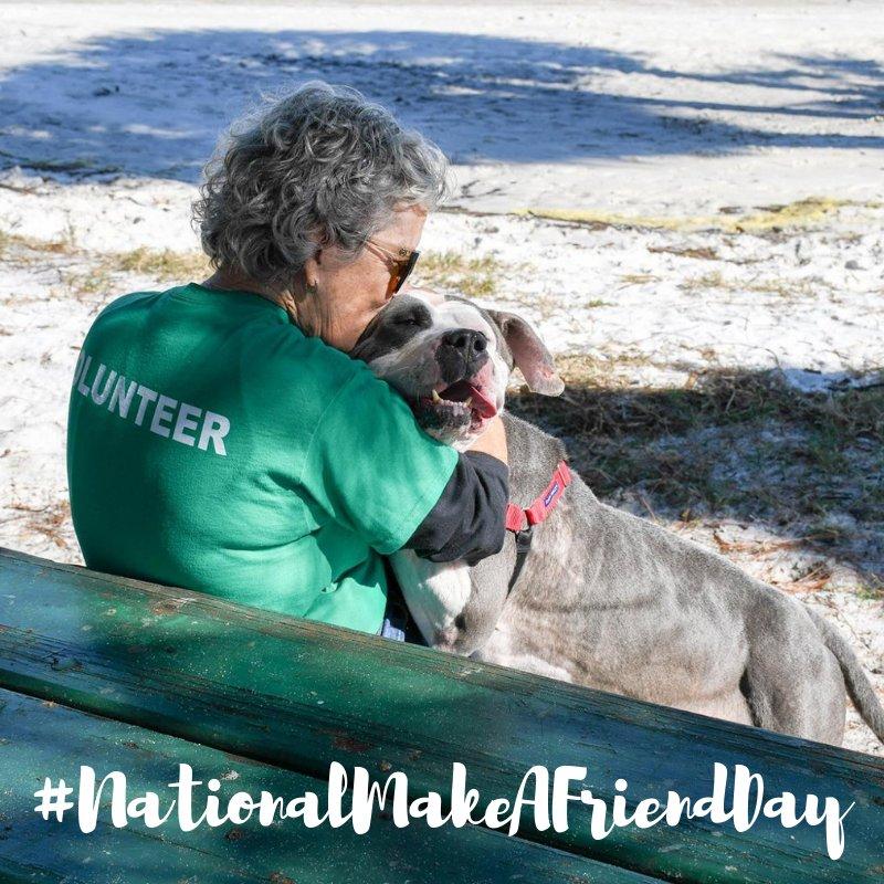 Humane Society of Pinellas's photo on #NationalMakeAFriendDay
