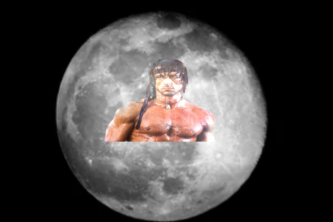 tommy dubs's photo on Rambo