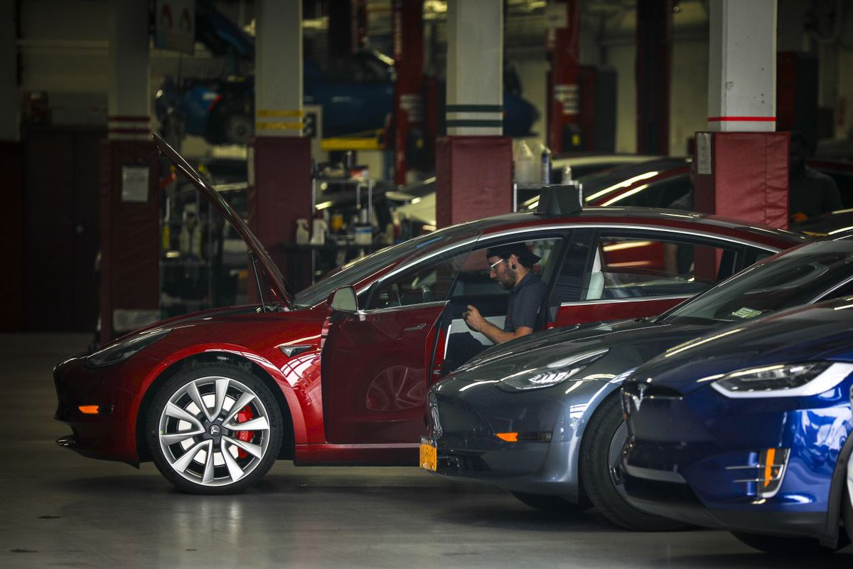 pdf the prevention of