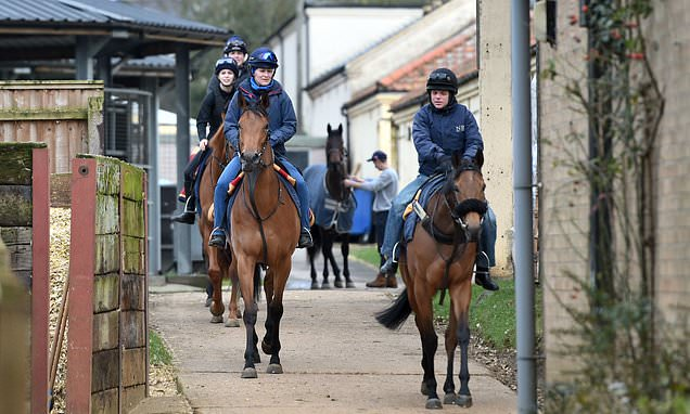 Horse Racing News's photo on The BHA