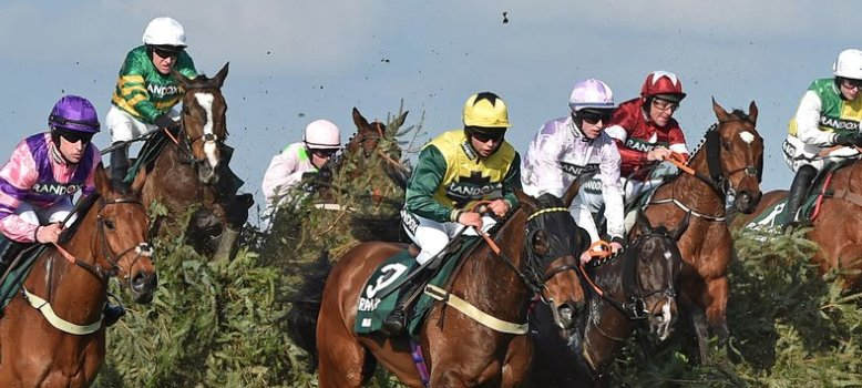 Daily Record Sport's photo on The BHA