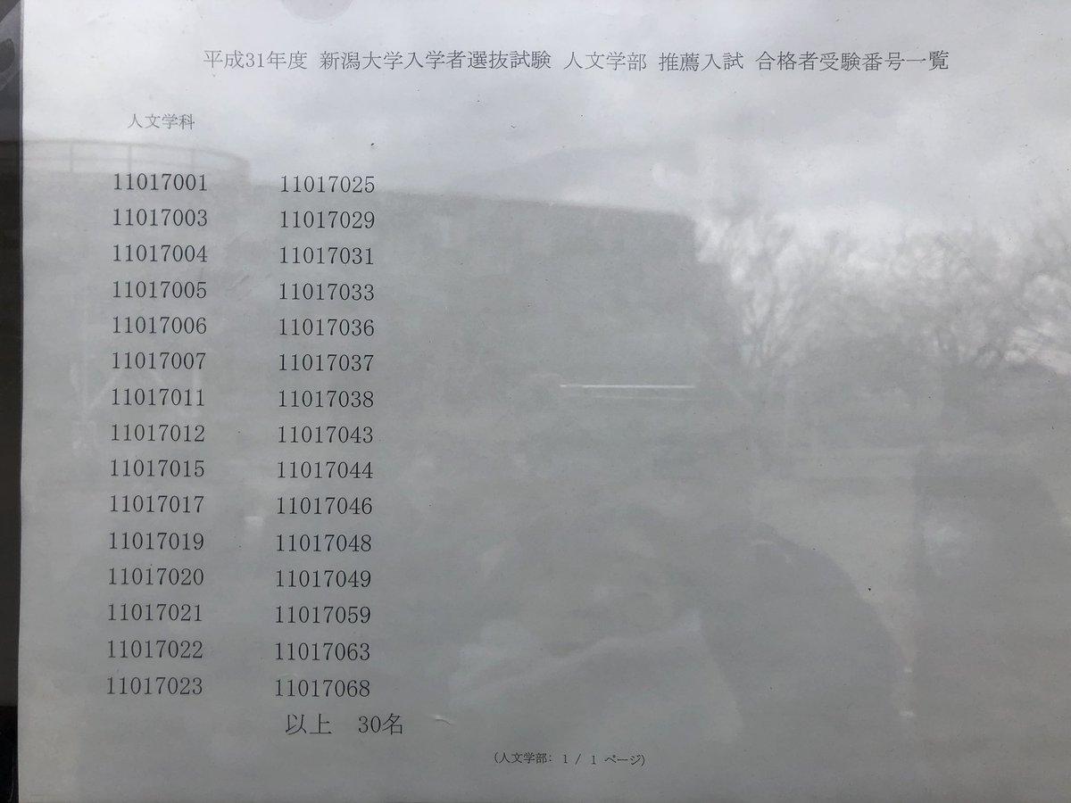 大学 人 文学部 新潟